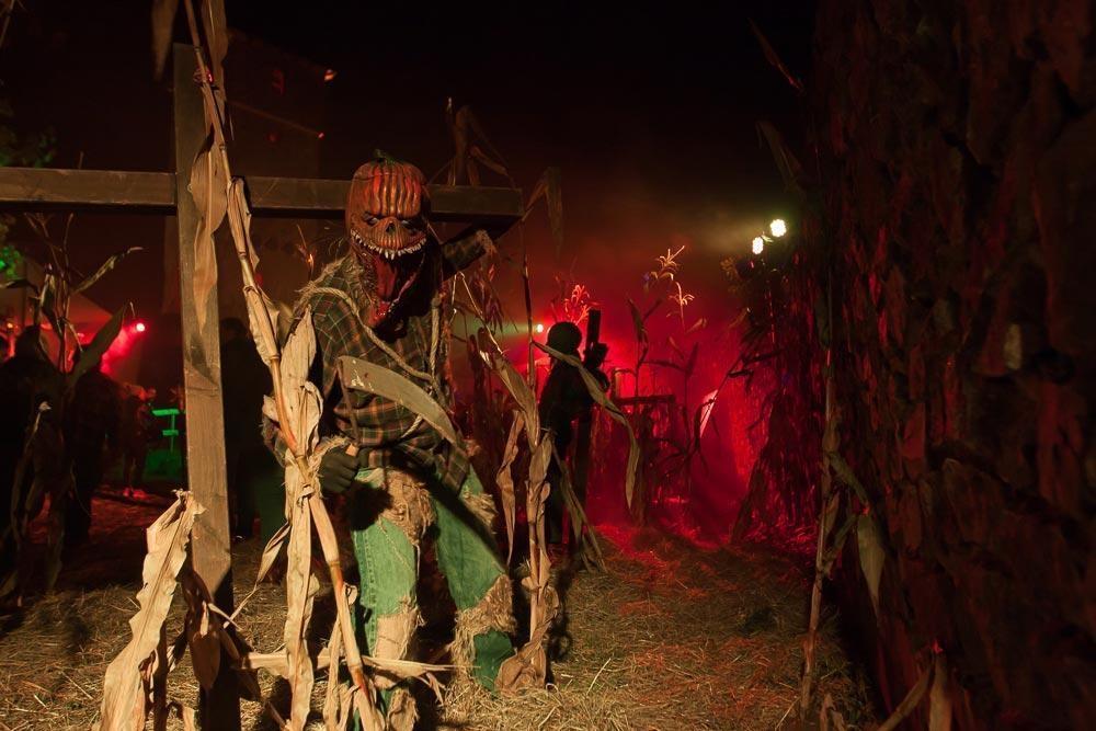 Halloween auf Burg Frankenstein - Die Mutter aller Schlachten