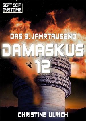 Das 3. Jahrtausend: Damaskus 12 - Zukunftsfragen zwischen Freiheit und Notwendigkeit