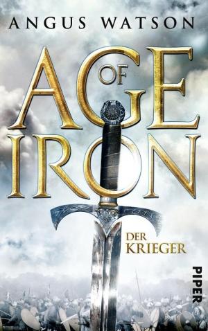 Der Krieger - Age of Iron 1