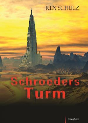 Schroeders Turm - Ermittlungen eines Kommissars im Jahr 2302